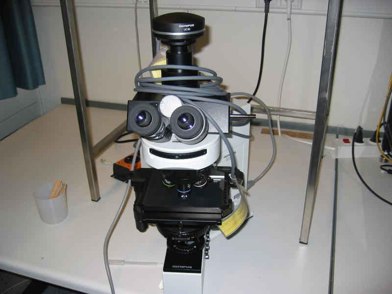 Olympus bx f mikroskop gebraucht kaufen auction premium