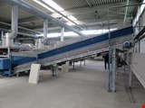 Frei Fördertechnik furnace discharge belt conveyor (307)