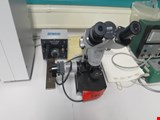 Zeiss stereo microscope